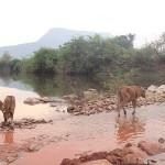 Départ le troisième jour : route bloquée par de l'eau