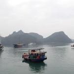 Port de l'île de Catba dans la baie d'Halong
