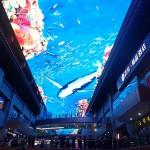 Le plafond du centre commercial est en fait un écran (très très) géant diffusant des animations