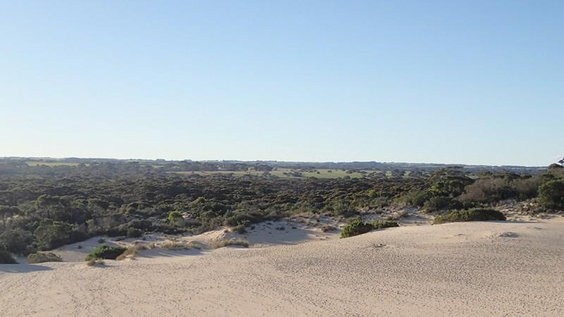 Là où s'arrête le désert commence la campagne et ses champs