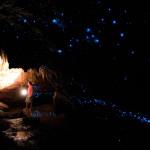 Visite d'une grotte de vers luisants (photo sur le site de Nikau Cave)