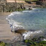 Tortues dans le port d'Hanga Roa