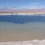 Laguna Cejar, lac contenant 30% de sel donc on flotte!!