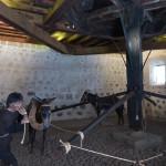 Système actionné au sous-sol par des ânes