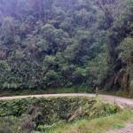 Arrivée dans la partie tropicale de la route