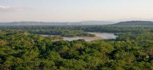 PHOTOS : BOLIVIE (FORET AMAZONIENNE)
