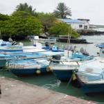 Port de l'île de Santa Cruz
