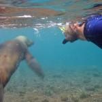 Autre séance de snorkeling