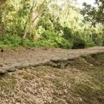 Une route de pierre parfaitement plate vieille de 1000 ans